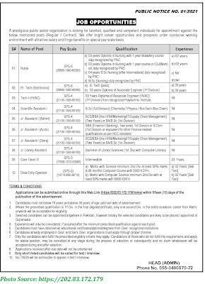 Public Sector Organization PAEC Jobs March 2021 Apply Online Assistants, Nurses, and Others