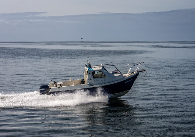 Photo of fishing boat Argonaut on the Solway Firth