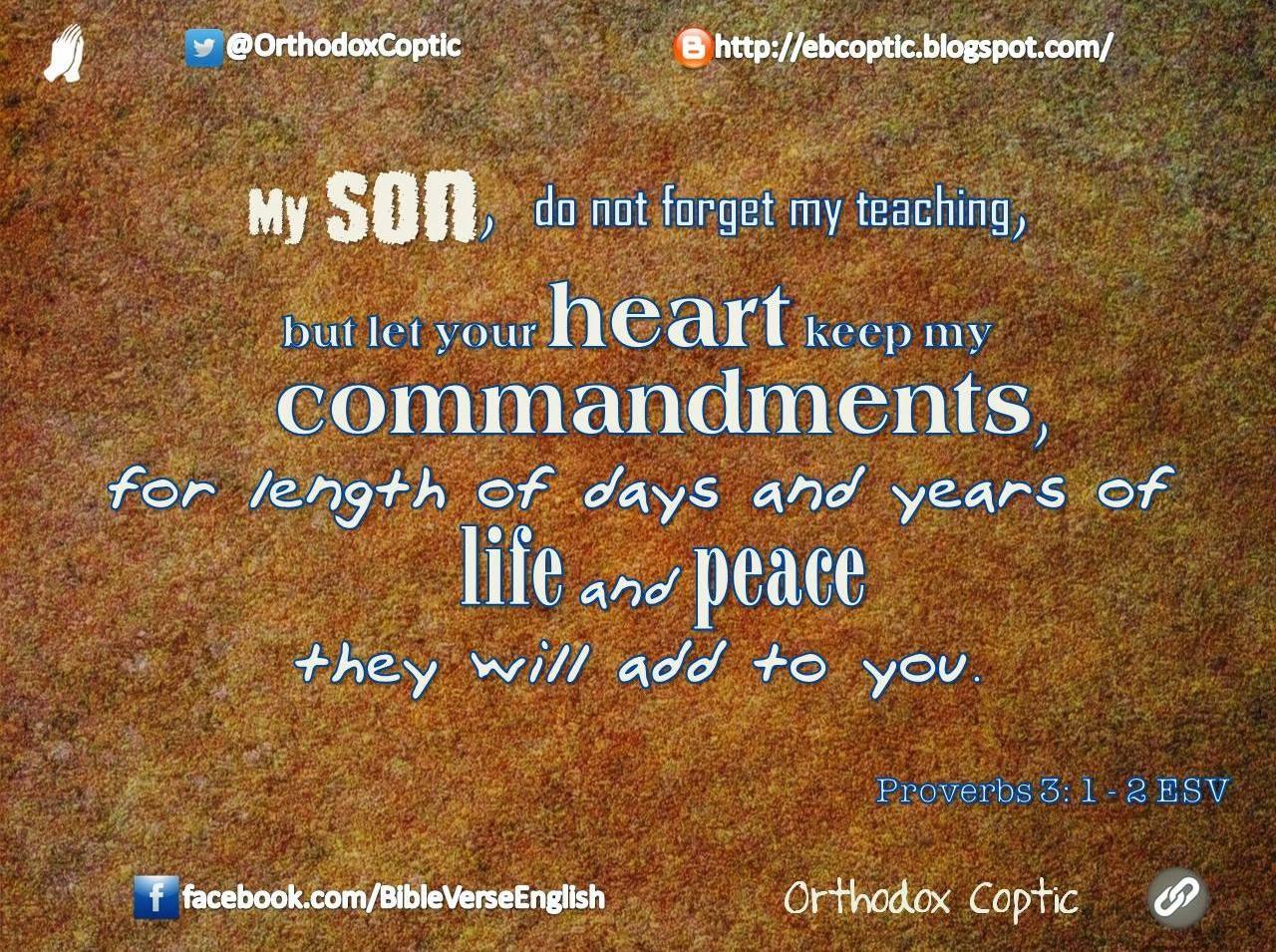 Bible Proverbs 3 1