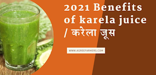 2021 Benefits of karela juice / करेला जूस