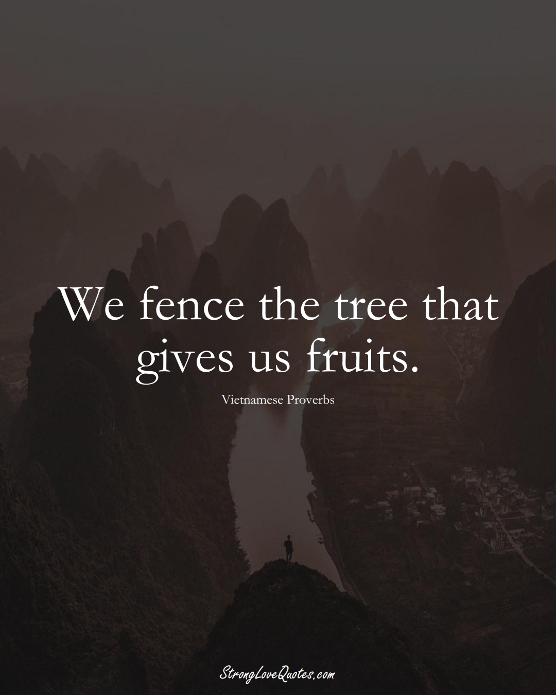 We fence the tree that gives us fruits. (Vietnamese Sayings);  #AsianSayings