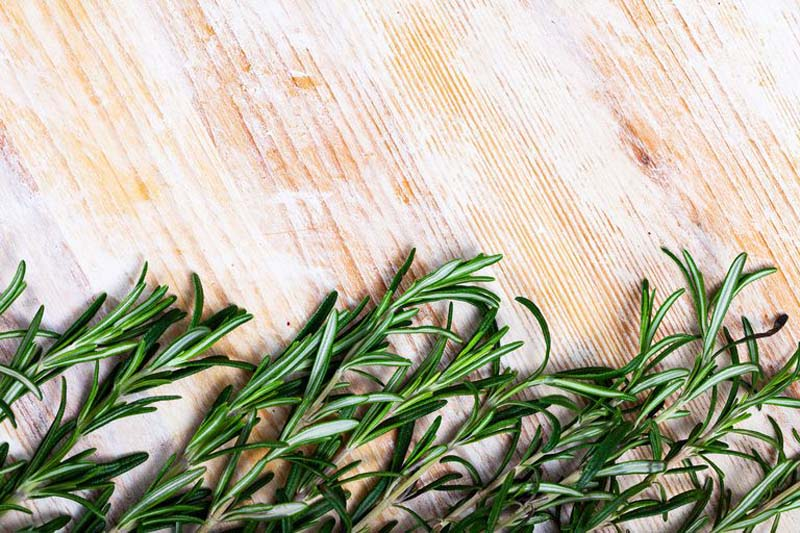 How to Grow an Indoor Herb Garden That Actually Stays Alive