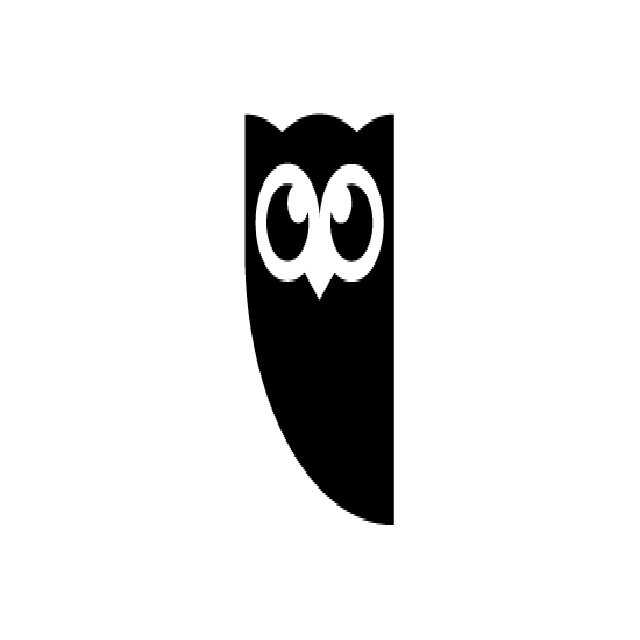Plugin WordPress ke Hootsuite Pro