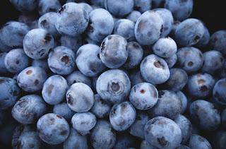 manfaat blueberry untuk kesehatan tubuh