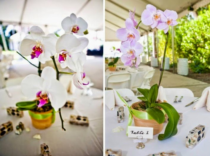 Orchid weddings table arrangements