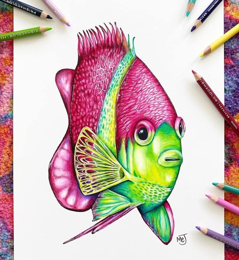 02-Colorful-fish-Morgan-Johnson-www-designstack-co