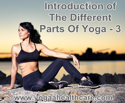 different parts types of yoga introduction 3  yoga