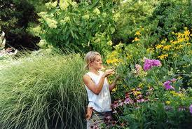 Mantenimientos de Jardines