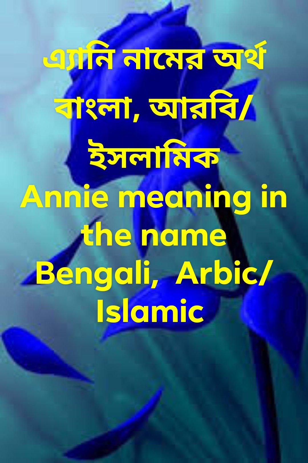 Annie name meaning in Bengali,  এ্যানি নামের অর্থ কি, এ্যানি নামের বাংলা অর্থ কি, এ্যানি নামের ইসলামিক অর্থ কি, এ্যানি কি ইসলামিক/ আরবি নাম