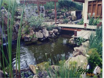Detalhe do lago de carpas com a ponte de madeira de Garapeira e a execução do paisagismo com pedras.