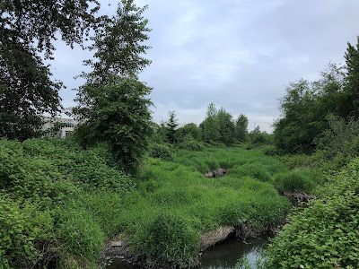 Logan Creek in Langley City