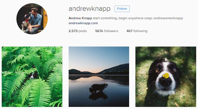 Andrew Knapp