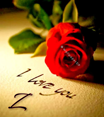 Whatsapp Dp Alphabet A to Z with Red Rose for Lovers I Love You