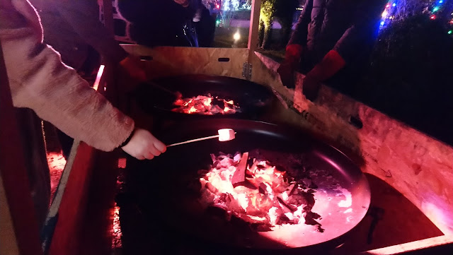 Christmas at Beaulieu - toasting marshmallows