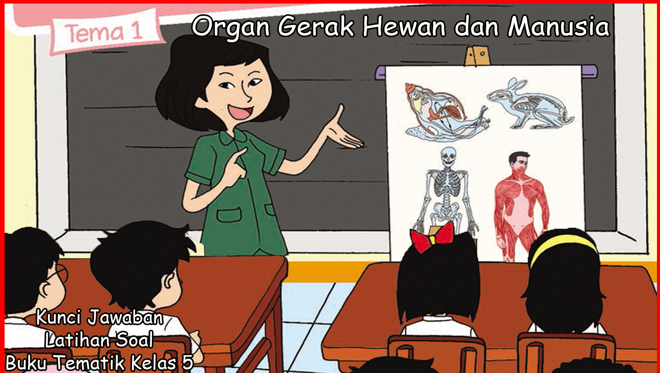 Kunci Jawaban Buku Siswa Kelas 5 Tema 1 Organ Gerak Hewan Dan Manusia Contoh Rpp Sd Dan Soal Sd