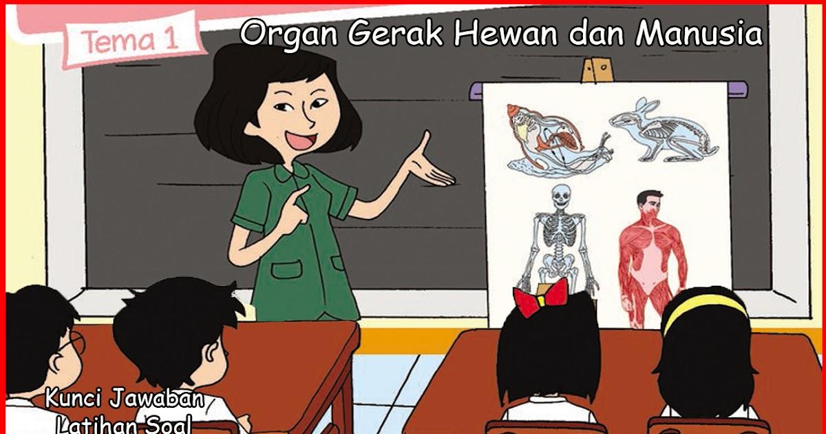 Soal dan kunci jawaban tema 1 kelas 5 sub tema 2. Kunci Jawaban Buku Siswa Kelas 5 Tema 1 Organ Gerak Hewan