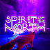 Nordic-inspired adventure Spirit of the North Signature Edition now available to pre-order for Nintendo Switch & PlayStation 4!