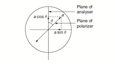 Malus law diagram