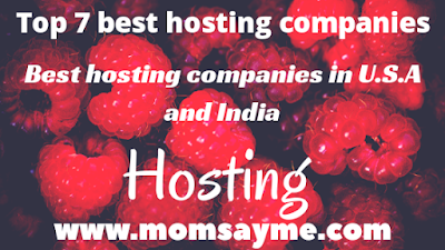 Top 7 best hosting companies • Best hosting companies in U.S.A and India