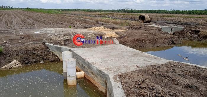 Guna Pemerataan Air Sawah, Pemda Mesuji Bangunan 84 Unit Bak Bagi