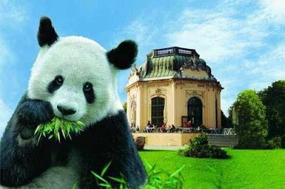 Kebun Binatang Tiergarten Schonbrunn