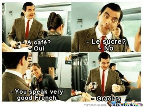 my extent of the french language_o_655274 english en français jokes and memes in english )