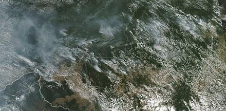 Αμαζόνιος: Το μέγεθος της καταστροφής όπως το αποτύπωσε η NASA