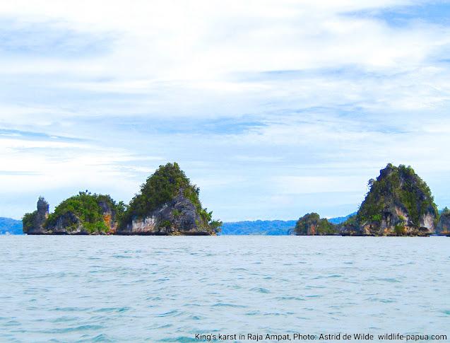 karst in Raja Ampat islands