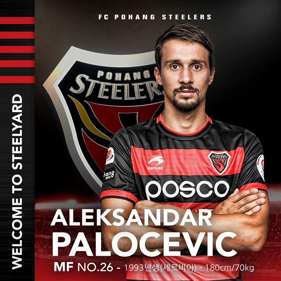 Transfer Profile: Pohang Steelers' Aleksandar Paločević K League 1