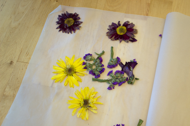 How to Make Dried Flower Suncatcher easy spring craft with kids