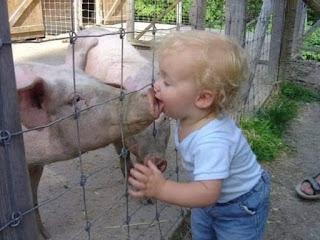 Niño da beso a un cerdo
