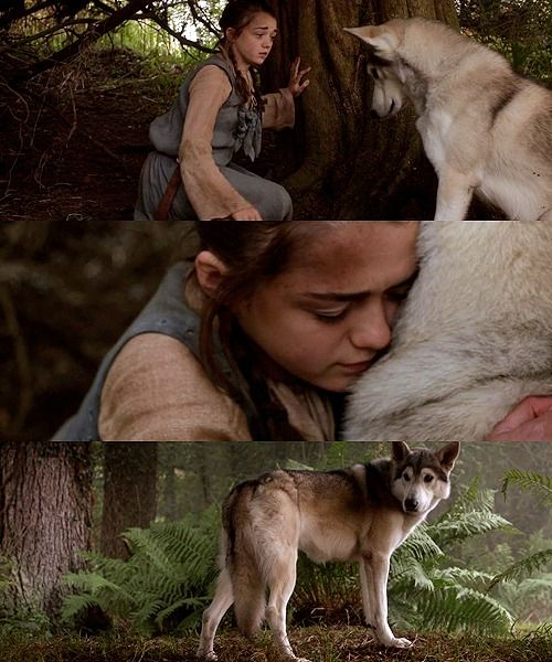 A Lady And Her Dire Wolf: How The Game Of Thrones Ends Based Upon The Wheel Of Time