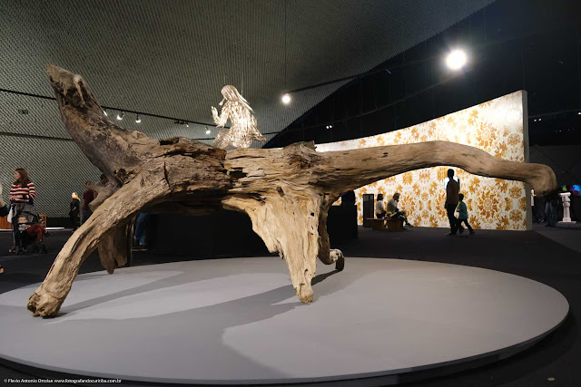 Obra do artista plástico chinês Ai Weiwei feita com raízes e troncos