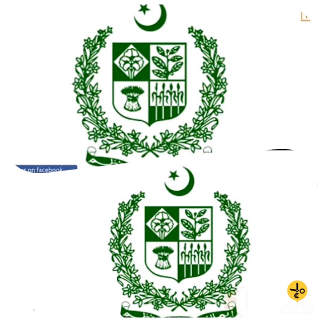 What does this symbol of Pakistan mean?