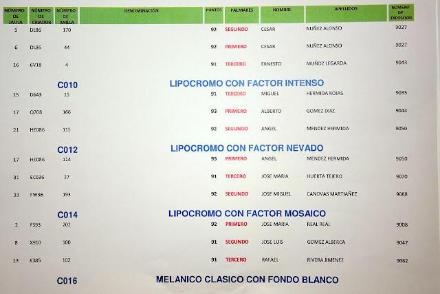 Canaricultura Aranjuez 2019