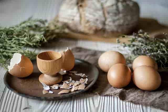 Dietto ile Sağlıklı Kilo Vermek 1