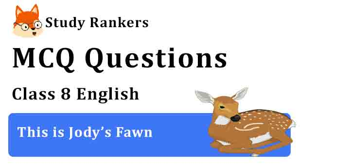 MCQ Questions for Class 8 English Chapter 6 This is Jody's Fawn Honeydew