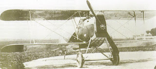 An Ansaldo A1 Balilla similar to those flown by Leopoldo  Eleuteri towards the end of the First World War
