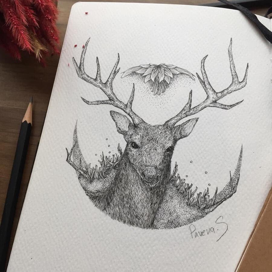 07-The-deer-Pavena-www-designstack-co