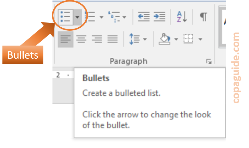 Using Text and Paragraph Formatting in MS-Word Hindi Notes