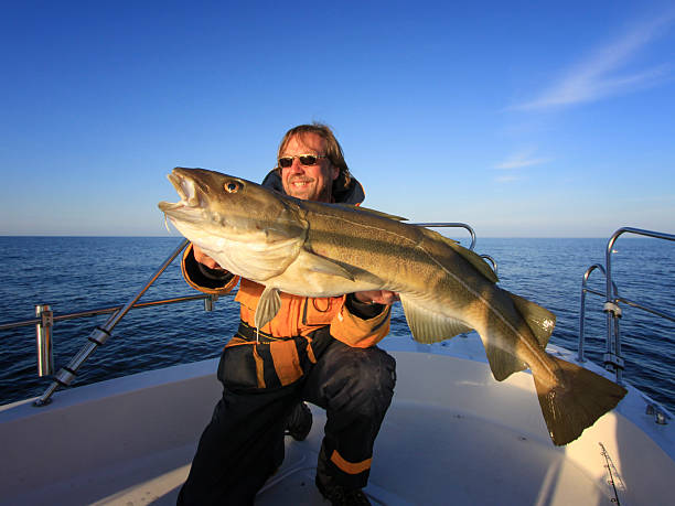Fishing for Cod – Off the Coast of Maine