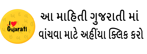 https://www.barobarche.in/2019/12/gujarat-latest-news-helmet-will-be-compulsory-gujarati.html