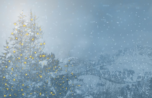 vintage christmas, pinterest christmas