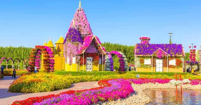حديقة الأزهار في دبي