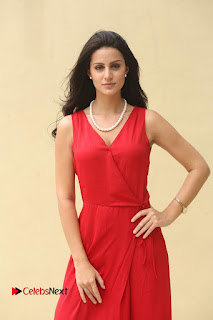 Actress Larissa Bonesi Pictures in Red Long Dress at Thikka Interview 0195