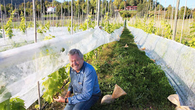 Marius Egge, and Egge Gård vineyard.