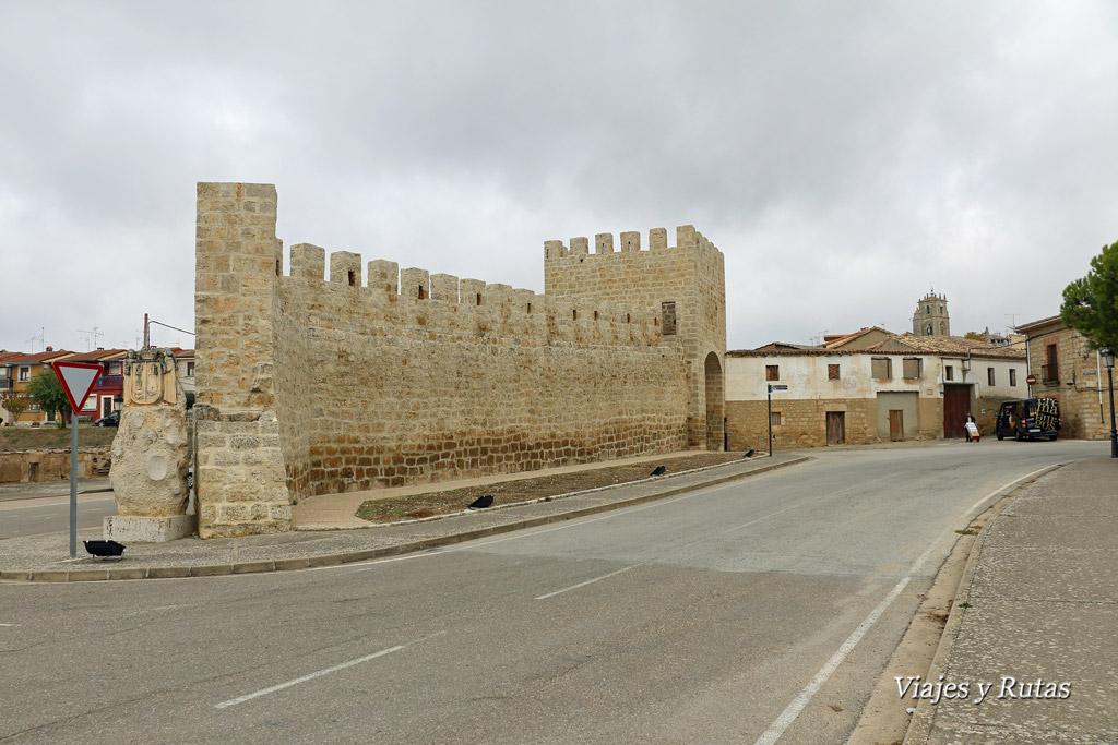 Muralla de Sasamón, Burgos