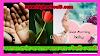 সকালের প্রার্থনা যা আপনাকে করবে আরো উদ্যমী ও সাহসী | Morning Prayer |  Prarthana | HighSchool9