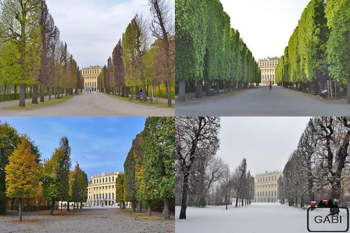 Po trzech latach w Austrii