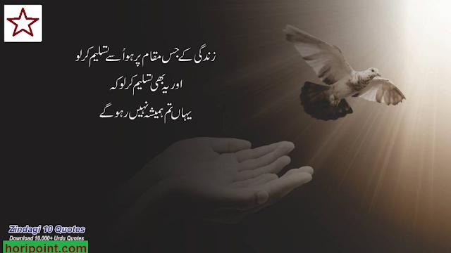 zindagi ki haqeeqat ko bas itna hi jana hai,insan kya hai in urdu